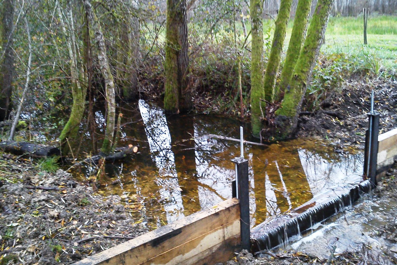 Travaux de neutralisation des drains - La Confrérie à Saône